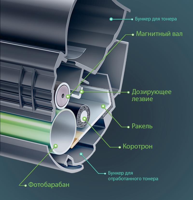 Основные детали лазерного принтера картинка